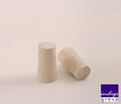 Dop pluta conic D 21*19-31h mm